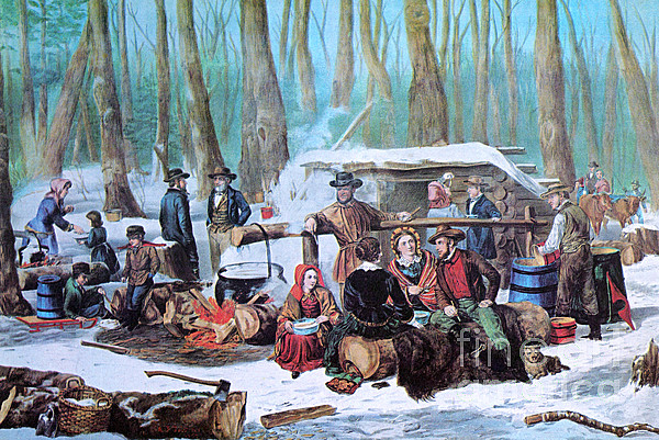 History Photograph - Maple Sugaring, 1872 by Photo Researchers