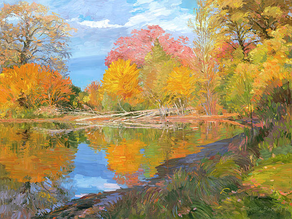 Fall Trees Painting - Mayslake At Fall by Judith Barath
