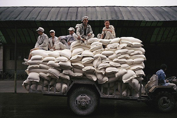 Chinese Ethnicity Photograph - Men Sit On Bags Of Flour by Justin Guariglia