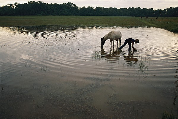 Water Holes Photograph - Mennonite Farm Child With Horse by Randy Olson