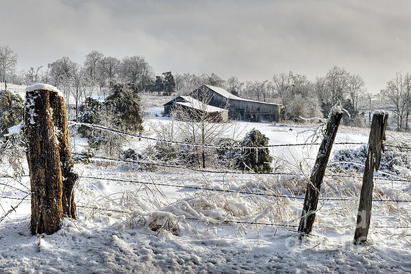 Fence Photograph - Midwestern Ice Storm - D004825 by Daniel Dempster
