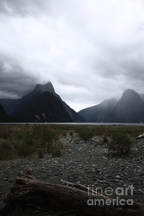 Misty Photograph - Milford Sound by Pixel Chimp