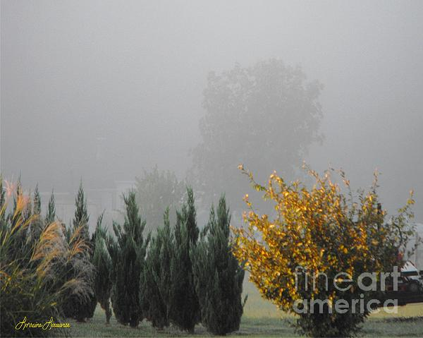 Landscape Photograph - Misty Fall Day by Lorraine Louwerse