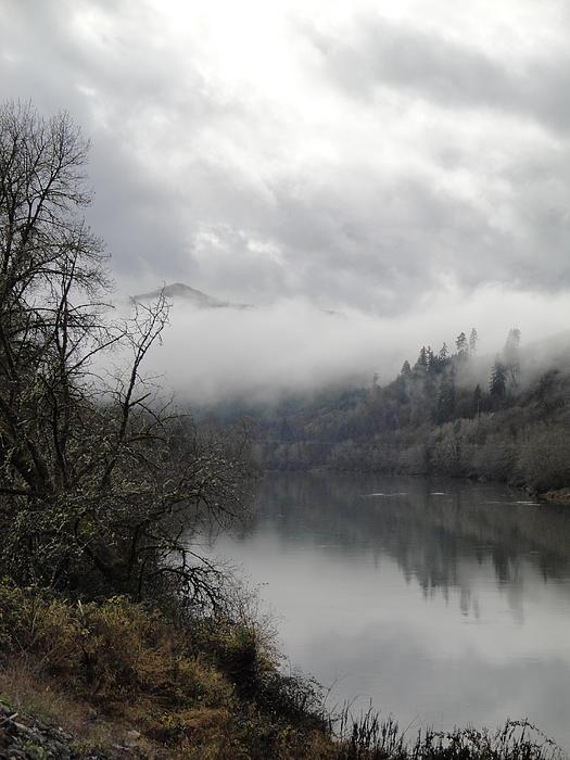 Umpqua River Photograph - Misty River Drive Along The Umpqua by Alison Foster