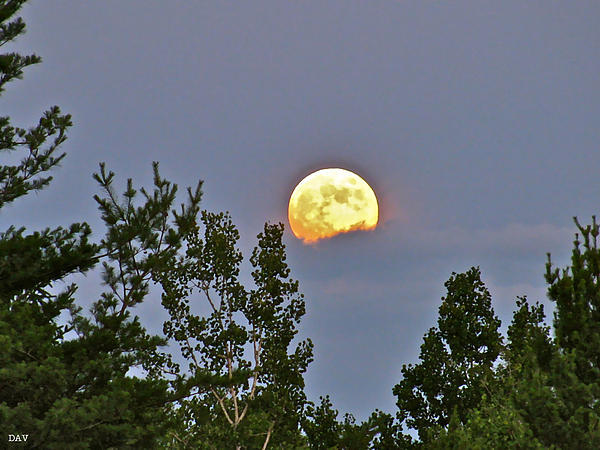 Rolling On A Cloud Photograph - Moon Romance  by Debra     Vatalaro