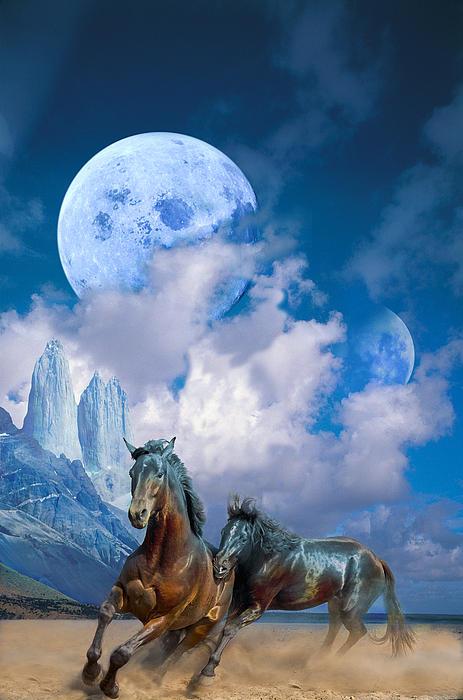 Horses Digital Art - Moonlight Horses by Pavlos Vlachos