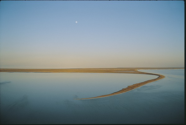 Moons Photograph - Moonrise Over Flooded Lake by Jason Edwards