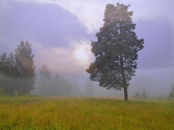 Landscape Photograph - Morning Ligut-3 by Vladimir Kholostykh