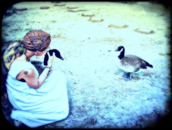Canada Geese Mixed Media - Mother And Geese by YoMamaBird Rhonda