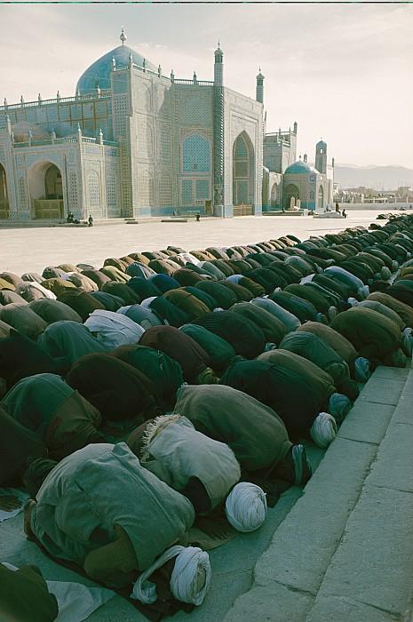 afghanistan  - Muslims Praying In Afghanistan by Thomas J. Abercrombie