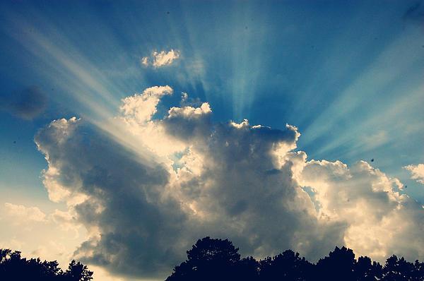 Sunlight Photograph - Ocean Of Light by Jessica Wilson