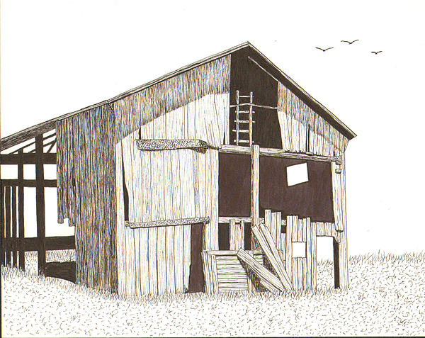 Pen And Ink Drawing - Ohio Barn by Pat Price