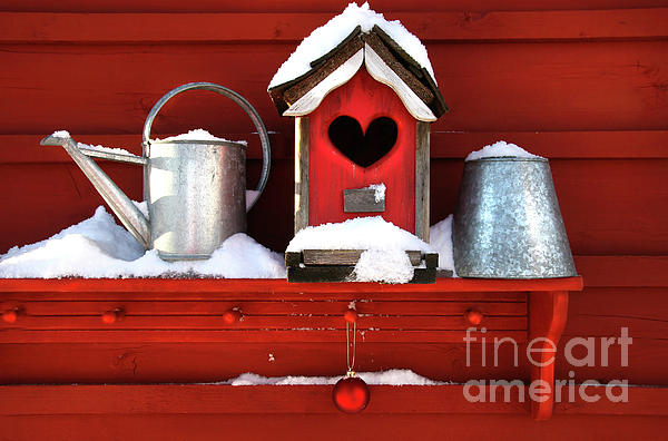 Bird Photograph - Old Red Birdhouse by Sandra Cunningham
