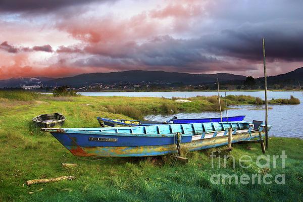 Autumn Photograph - Old Row Boats by Carlos Caetano