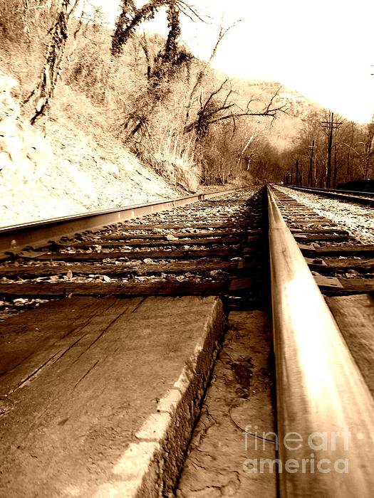 Railroad Tracks Photograph - On The Rail by Amy Sorrell