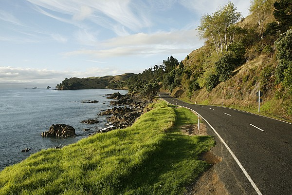 Day Photograph - On The Road Around The Coromandel by Dawn Kish
