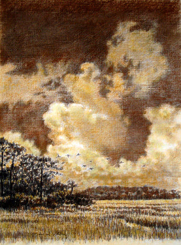 Marsh Scenes Painting - Original Flying Through The Clouds by Michael Story