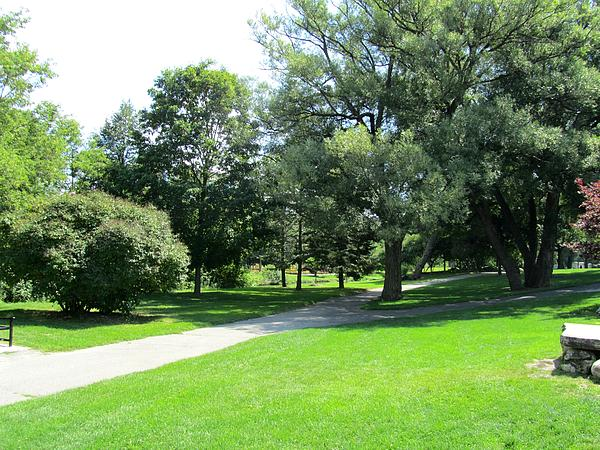 Oshawa Photograph - Oshawa Botanical Garden 2 by Sharon E Steinhaus