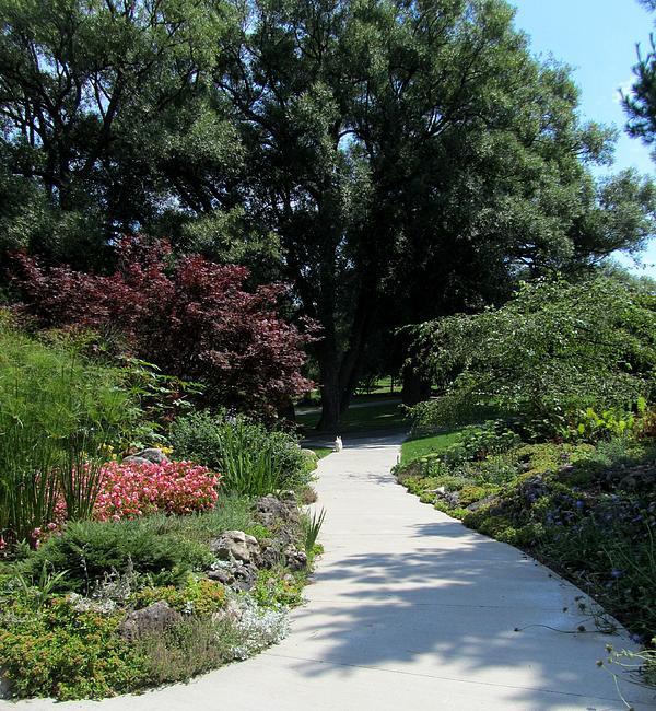 Oshawa Photograph - Oshawa Botanical Garden 4 by Sharon Steinhaus