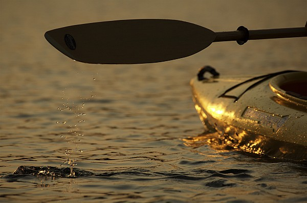 Paddling Photograph - Paddling A Kayak Over Walden Pond by Tim Laman