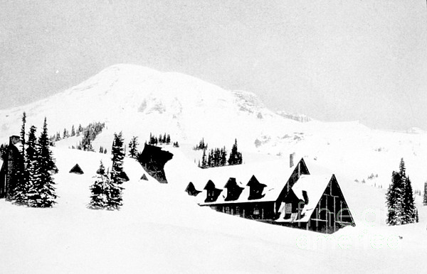 Science Photograph - Paradise Inn Buried In Snow, 1917 by Science Source