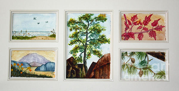 Parcels Painting - Parcels Of Nature by Terri Mills