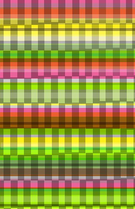 Louisa Photograph - Party Stripe by Louisa Knight