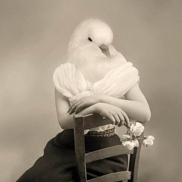 Surrealism Photograph - Peace Seeker by Mostafa Moftah