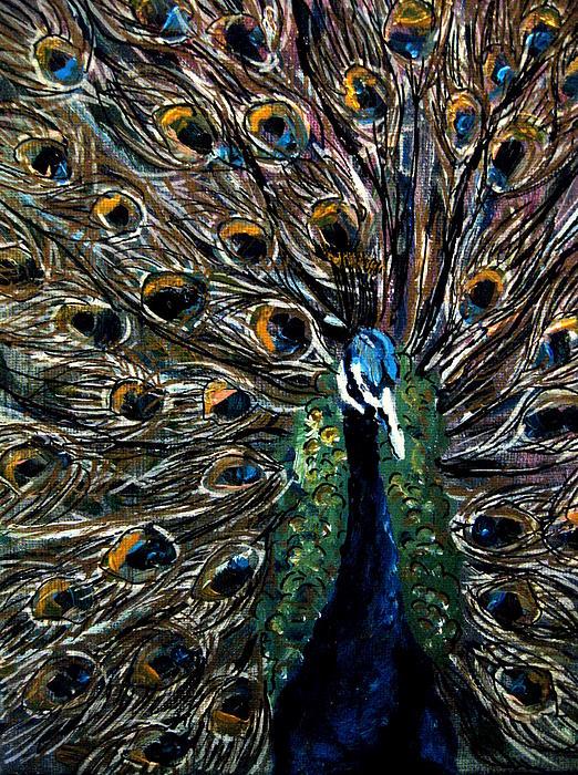 Peacock Painting - Peacock 2 by Amanda Dinan