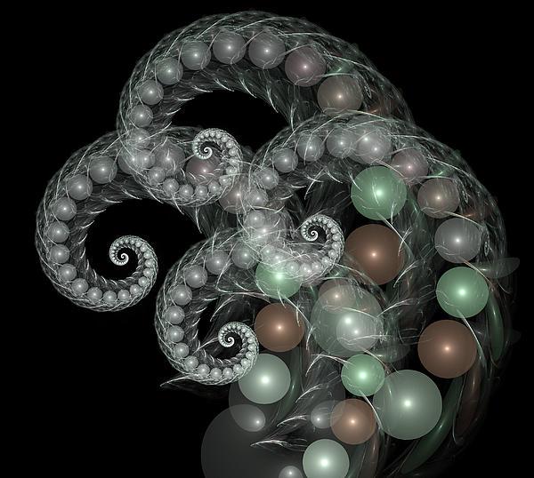 Nature Digital Art - Pearl Curls by Pam Blackstone