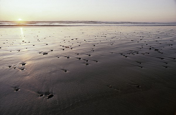 Ocean Photograph - Pebbles Form Patterns On A Sandy Ocean by Jason Edwards