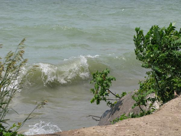 Lake Photograph - Pelee Shore by Ann Horn
