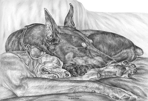 Doberman Drawing - Pleasant Dreams - Doberman Pinscher Dog Art Print by Kelli Swan