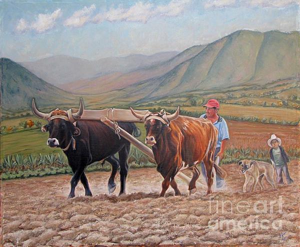 Latin American Paintings Painting - Ploughing In Ocotlan by Judith Zur