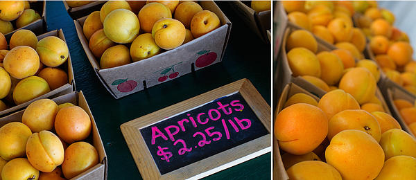 Apricots Photograph - Plump by Rebecca Cozart