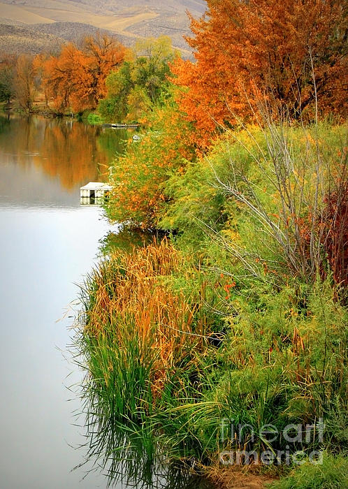 Prosser Photograph - Prosser Autumn Docks by Carol Groenen