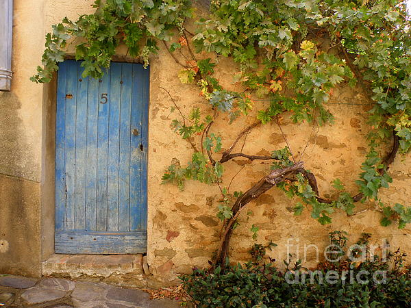 Door Photograph - Provence Door 5 by Lainie Wrightson