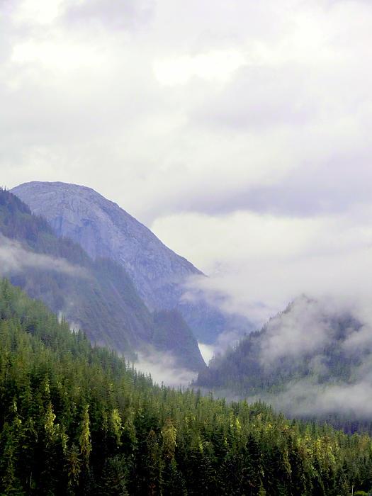 Mountains Photograph - Purple Mountain Majesties by Mindy Newman