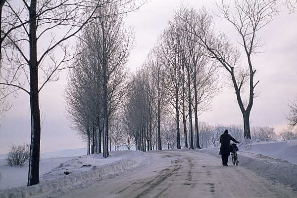 Outdoors Photograph - Pushing A Bike Along A Snow Covered by Gordon Wiltsie