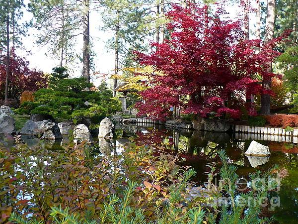 Autumn Photograph - Quiet Autumn Pond by Carol Groenen