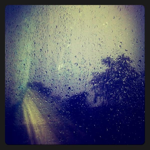 Nature Photograph - Rain Drops by Sumit Jain