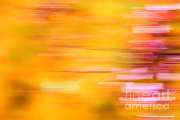 Orange Photograph - Rectangulism - S07a by Variance Collections