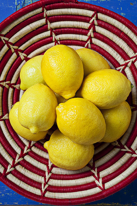 Basket Photograph - Red And White Basket Full Of Lemons by Garry Gay