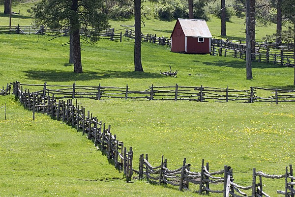 Bucolic Photograph - Red Barn On Highway 160 Near Pagosa by Rich Reid
