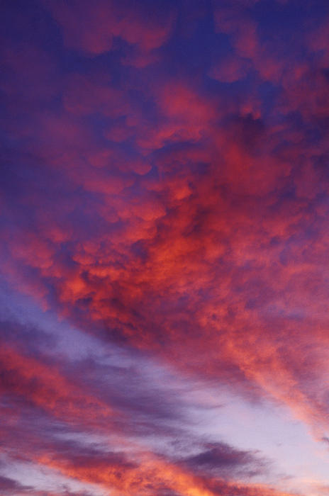 Red Clouds Photograph - Red Clouds by Garry Gay