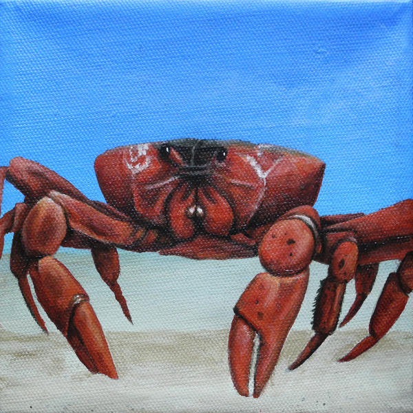 Red Painting - Red Crab by Cindy D Chinn