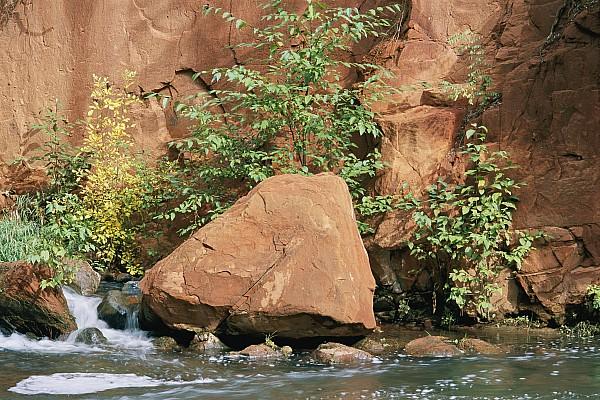 Oak Creek Canyon Photograph - Red Rocks, Fall Colors And Creek, Oak by Rich Reid
