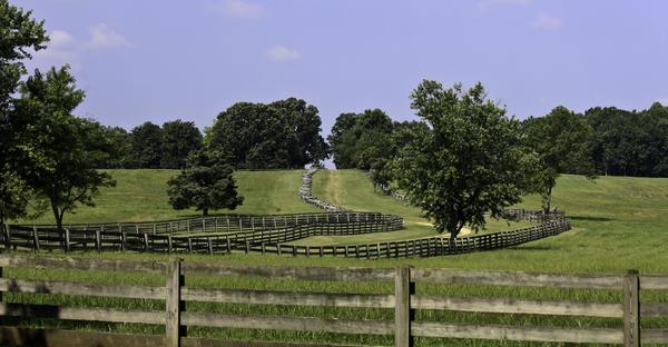 Appomattox Photograph - Road To Lynchburg by Teresa Mucha