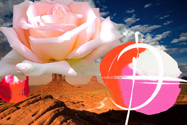 Flower Painting - Rosa Desert Crucio by Geronimo