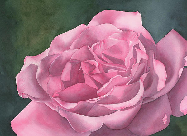 Rose Painting - Rose Blush by Leona Jones